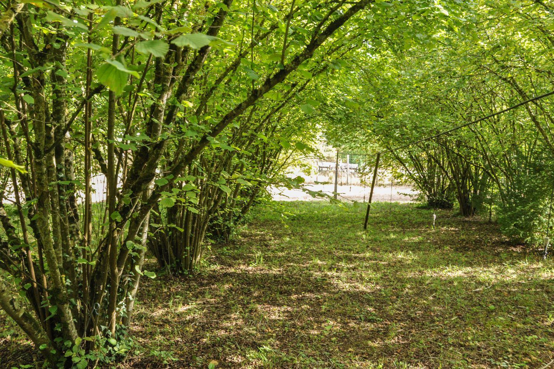 Truffes de Meuse - Blog La Marinière en Voyage
